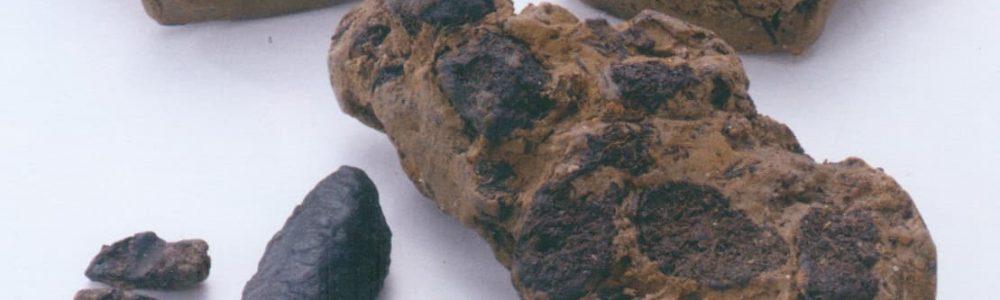 Tomizawa artefacts